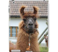 Llama Cell Phone Case - Sticker iPad Case/Skin