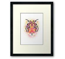 Sherbet Tiger Framed Print