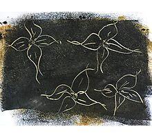 Black Flowers Photographic Print