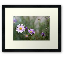 Facing Your Reality Framed Print