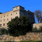 Drugolo Castle by annalisa bianchetti