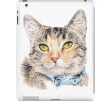 Ari - Rescue Kitten iPad Case/Skin