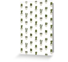 Cacti & Succulents (White) Greeting Card