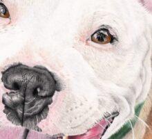 Jango - Staffordshire Bull Terrier Sticker