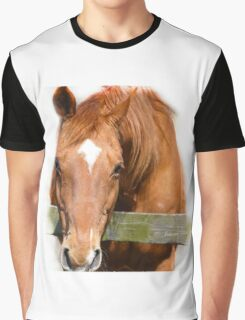 ... jump on my back and lets ride off... Graphic T-Shirt
