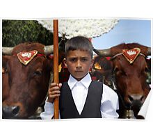 Boy and oxen Poster