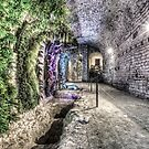 A Garden in the Basement (Girona Cathedral, Catalonia) by Marc Garrido Clotet