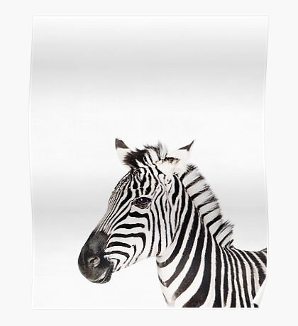 Zebra print, Nursery, Animal, Kids room, Modern art, Wall decor Poster