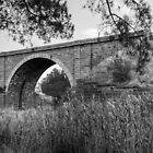 Riddell's Creek Historic Railway Bridge by Leanne Van Den Berg