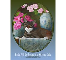 Buds Will be Roses and Kittens Cats Photographic Print