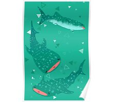 Teal Whale Shark Poster