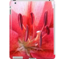 Pink Lily Up Close iPad Case/Skin