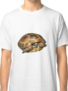 Greek Tortoises in Shell Classic T-Shirt