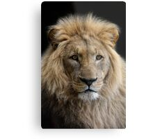 King without a crown Metal Print