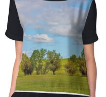 Trees in a Springtime Meadow Chiffon Top