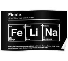 FeLiNa (Breaking Bad) Poster