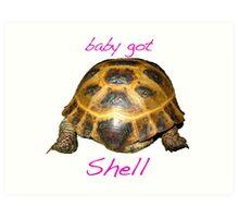 Tortoise - Baby Got Shell Art Print