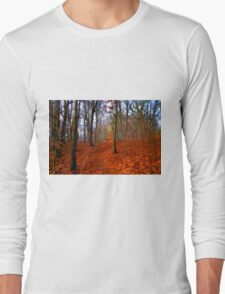 Late Autumn in the woods Long Sleeve T-Shirt