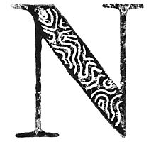 Serif Stamp Type - Letter N Photographic Print