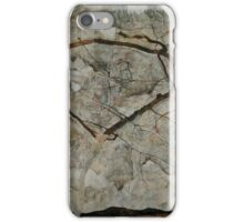 Egon Schiele - Autumn Tree in Stirred Air Winter Tree 1912 Expressionism, Landscape iPhone Case/Skin