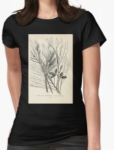 Southern wild flowers and trees together with shrubs vines Alice Lounsberry 1901 039 Cork Wood Womens Fitted T-Shirt