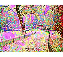 Color My World Happy Photographic Print