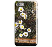 Wild Daisies on a Railroad Track iPhone Case/Skin