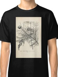 Southern wild flowers and trees together with shrubs vines Alice Lounsberry 1901 006 Bald Cypress Classic T-Shirt