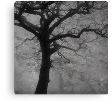 fog /Agat/  Canvas Print