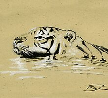 Swimming Tiger Sketch by Ray Cassel