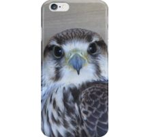 Falcon phone case for iphone and Samsung Galaxy iPhone Case/Skin