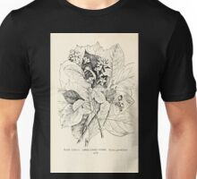 Southern wild flowers and trees together with shrubs vines Alice Lounsberry 1901 136 Large Leaved Storax Unisex T-Shirt