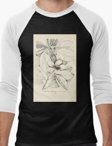 Southern wild flowers and trees together with shrubs vines Alice Lounsberry 1901 108 Franklinia Men's Baseball ¾ T-Shirt