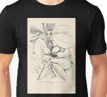 Southern wild flowers and trees together with shrubs vines Alice Lounsberry 1901 108 Franklinia Unisex T-Shirt