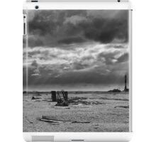 Dungeness Through a Prime Lens 06 iPad Case/Skin