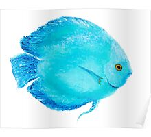 Tropical Turquoise Fish painting Poster