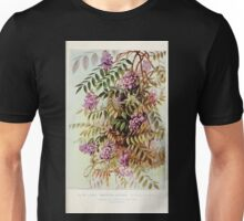 Southern wild flowers and trees together with shrubs vines Alice Lounsberry 1901 083 American Wistaria Unisex T-Shirt