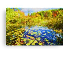 Autumn Lily pads  Canvas Print