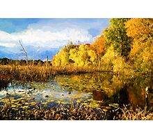 Autumn nature Photographic Print