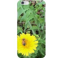 A Bee and a Wish iPhone Case/Skin