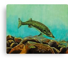 Underwater Predators panel 2 Canvas Print