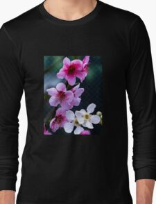 Spring blossoms Long Sleeve T-Shirt