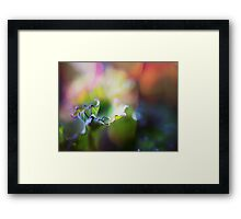 Super macro photography - water drop on the green leaf Framed Print