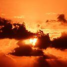 Another Sunrise at Bondi 2 by EzekielR