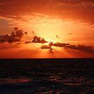 Another Sunrise at Bondi 3 by EzekielR
