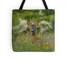Roe buck amongst the butter cups  Tote Bag