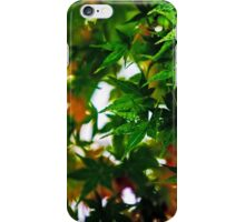 Maple in the Mist iPhone Case/Skin