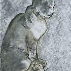 Cat in Zen by Niki Hilsabeck