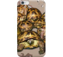 Greek Tortoise Group - Desert Camo Background iPhone Case/Skin