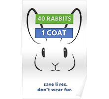 Anti-Fur Rabbit Poster